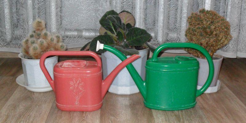 Лейки для комнатных растений