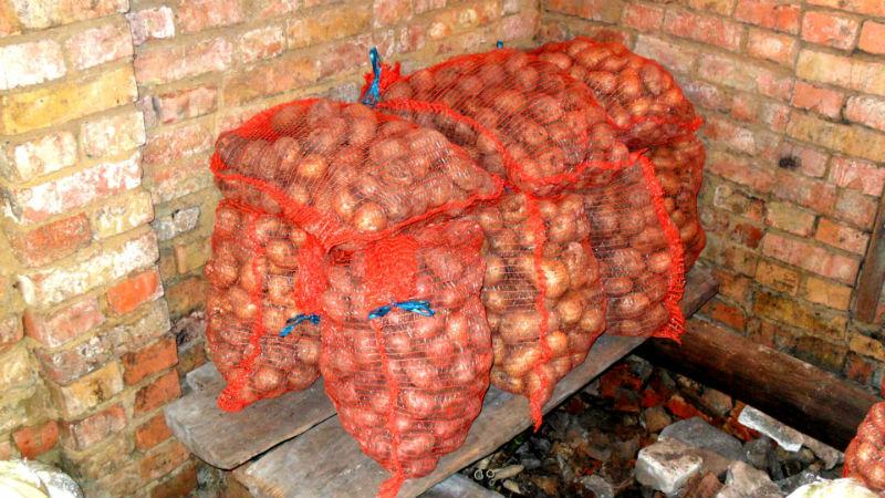Сетчатые мешки с картофелем в погребе
