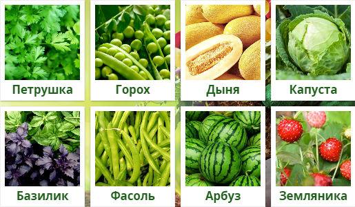 Изображения овощей